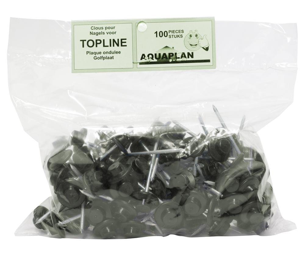 Topline Clous Vert sac